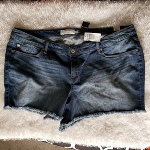 Torrid Womens Denim Jean Shorts Plus Size 26